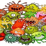 Как жить в мире с бактериями