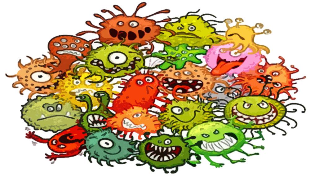 «Не все бактерии одинаково полезны!»