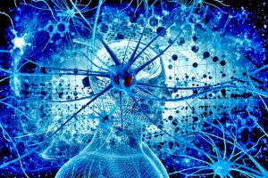Факты о мозге: режим «автоигнор»