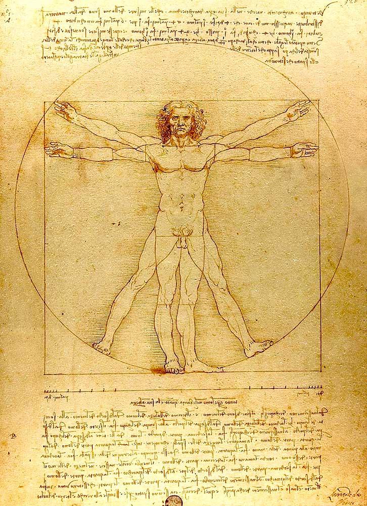 «Витрувианский человек», Леонардо да Винчи