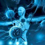 Когда сильный иммунитет — враг?